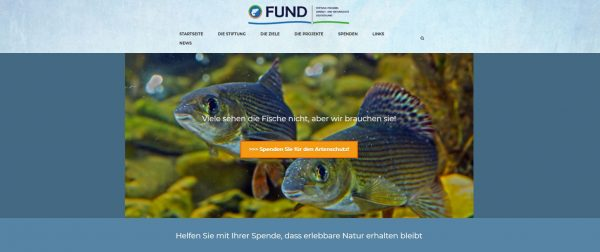 Header 3 FUND ULM